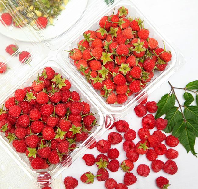 Tác dụng ngăn ngừa bệnh từ trái cây mà bạn ít biết tới