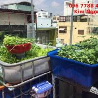 Bán thùng nhựa nuôi cá, trồng rau oganic giá rẻ