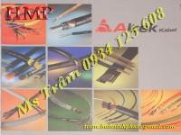 Cáp điều khiển hcm, cáp chống nhiễu, dây điều khiển, phân phối trực tiếp