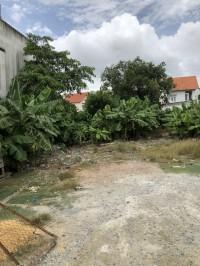 Cho thuê khu đất 12.000m2 đường huỳnh tấn phát quận 7