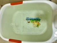 Dịch vụ vệ sinh làm sạch rong rêu màng nhầy trong đường ống nước sinh hoạt