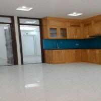 đột phá mới –trên cả xuất sắc – chung cư mini xã đàn chỉ hơn 800tr/căn