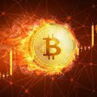 Giá bitcoin hôm nay 15/5: đồng loạt tăng mạnh, bitcoin vượt 50.000 đô la