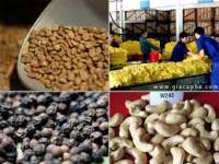 Hàng nông sản việt nam: vì sao nhiều nông sản việt kém cạnh tranh với hàng thái,