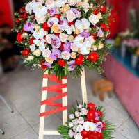 Hoa khai trương giá rẻ - miễn phí giao hoa