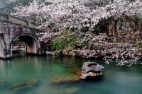 Khám phá nét đẹp qua các mùa ở hangzhou