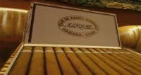 Máy tạo ẩm adorini cho xì gà