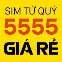Nên mua sim tứ quý 5555 của nhà mạng nào?