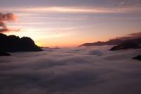 ô quy hồ sapa – tiếng chim da diết giữa núi rừng tây bắc và một huyền thoại về c