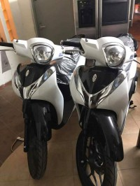 Thanh lý honda sh mode 2019 mới 100% xe máy nhập khẩu giá rẻ