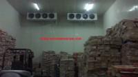 Thi công lắp đặt hệ thống kho lạnh bảo quản thủy sản