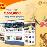 Thiết kế website giá cũ 9,5 triệu nay chỉ còn 2,6 triệu + 05 phần quà