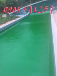 Cung cấp sơn nước và sơn epoxy các loại tại phú yên