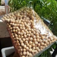Hạt sen bắc sấy khô loại 1 đặc sản hưng yên